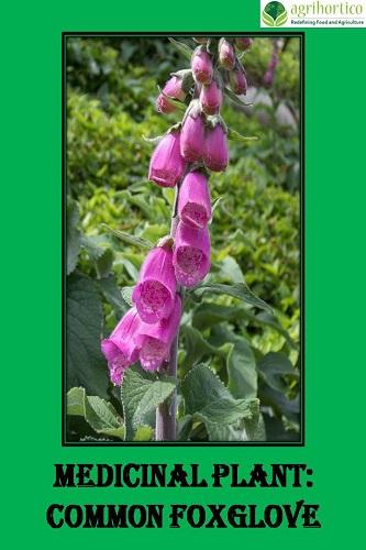 Medicinal Plant: Common Foxglove