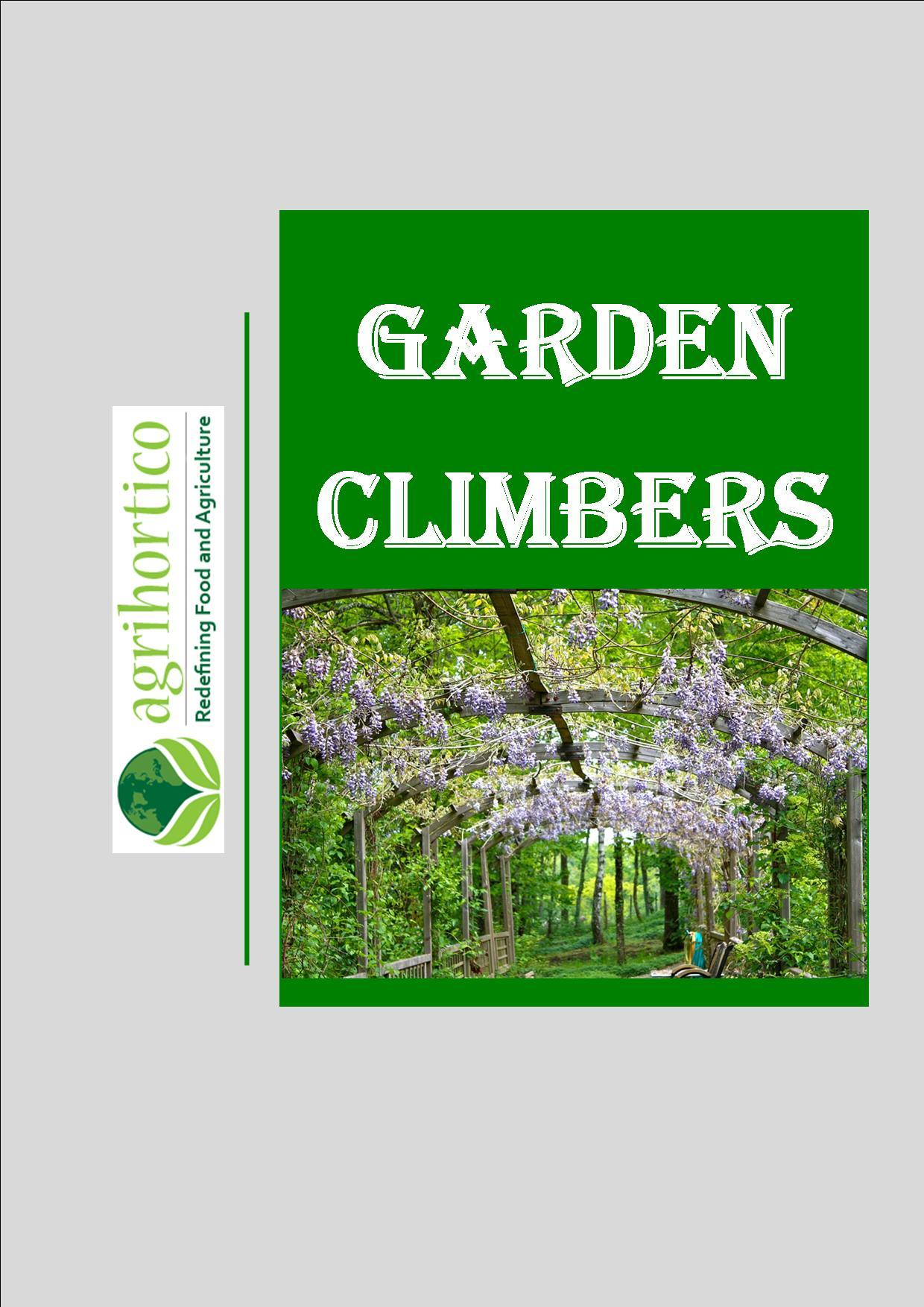 garden-climbers