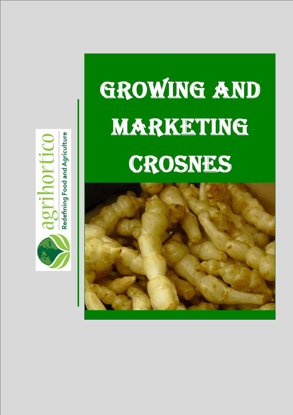 crosnes