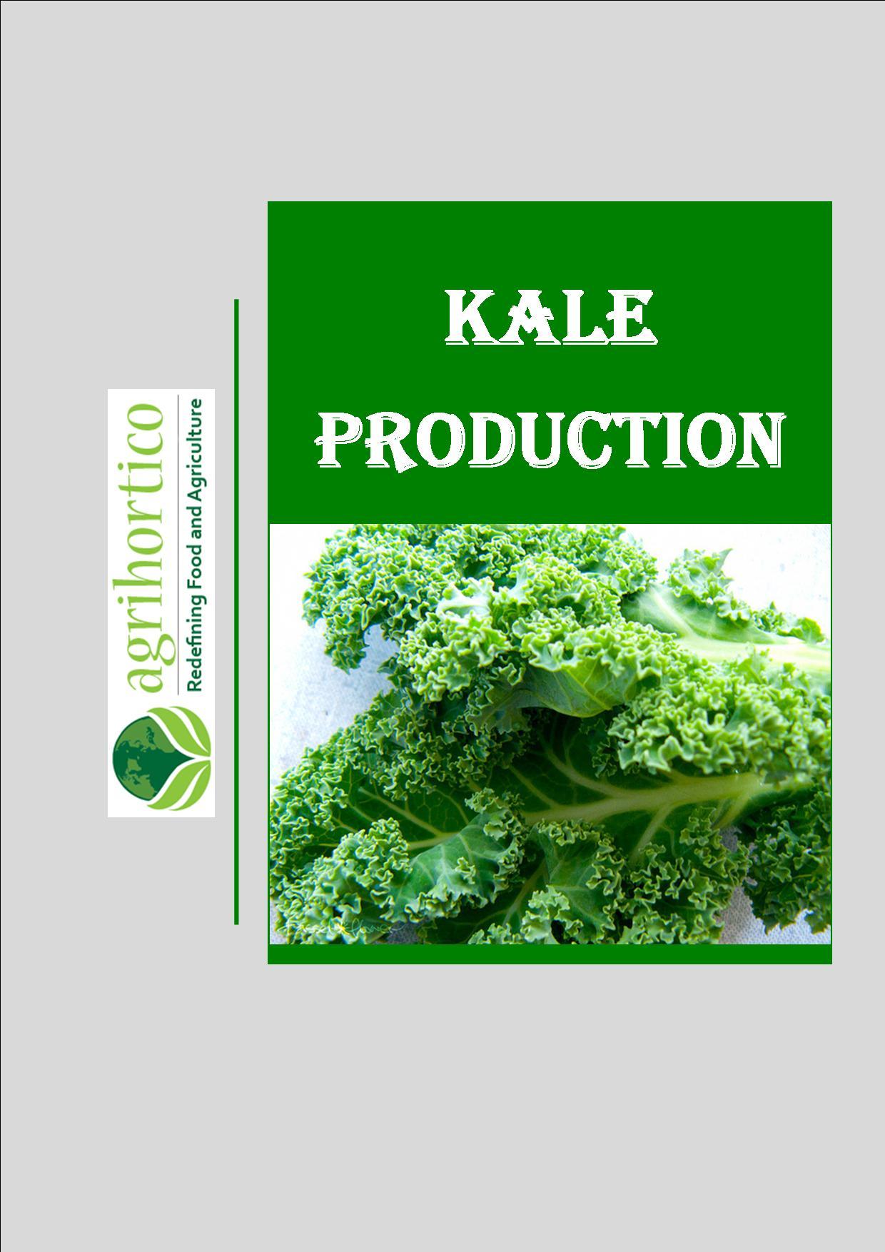 kale-prodution
