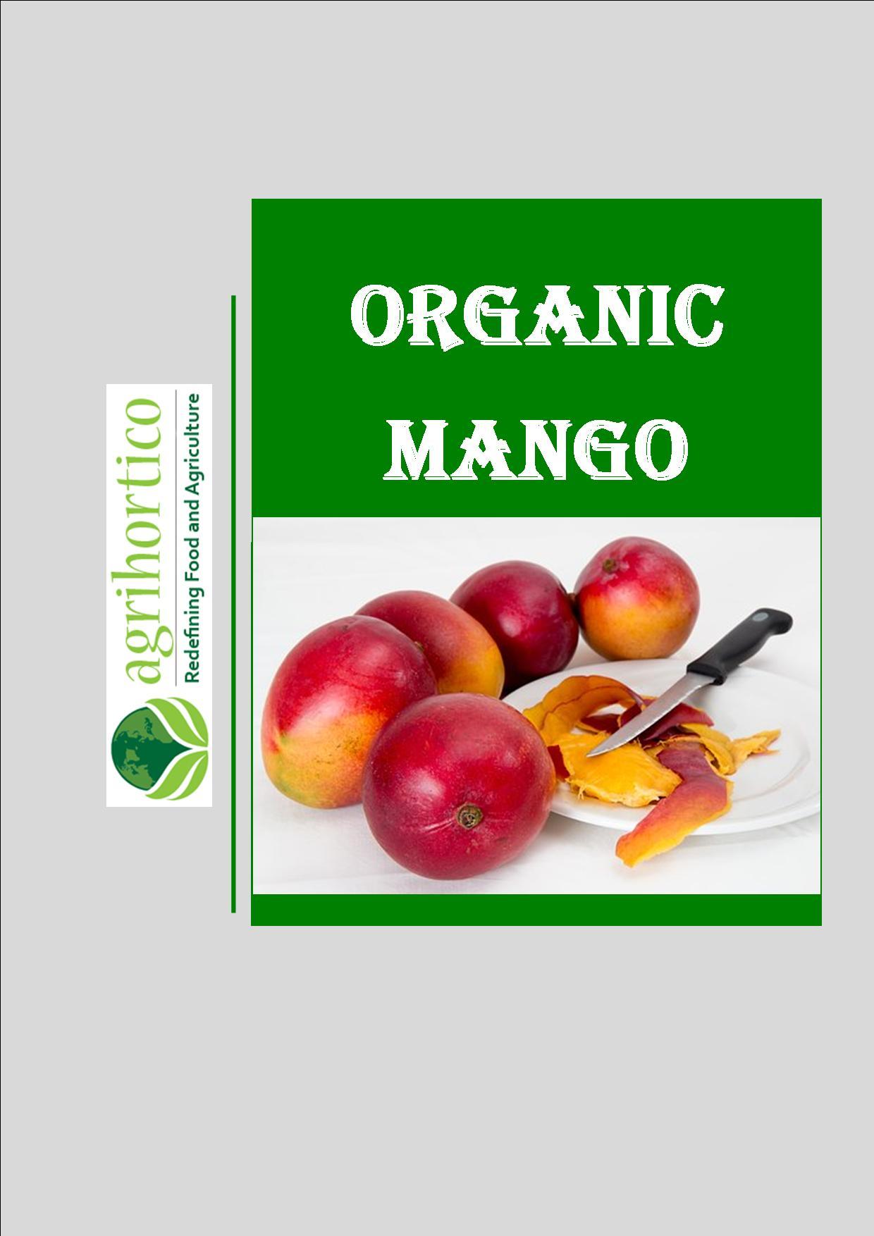 organic-mango