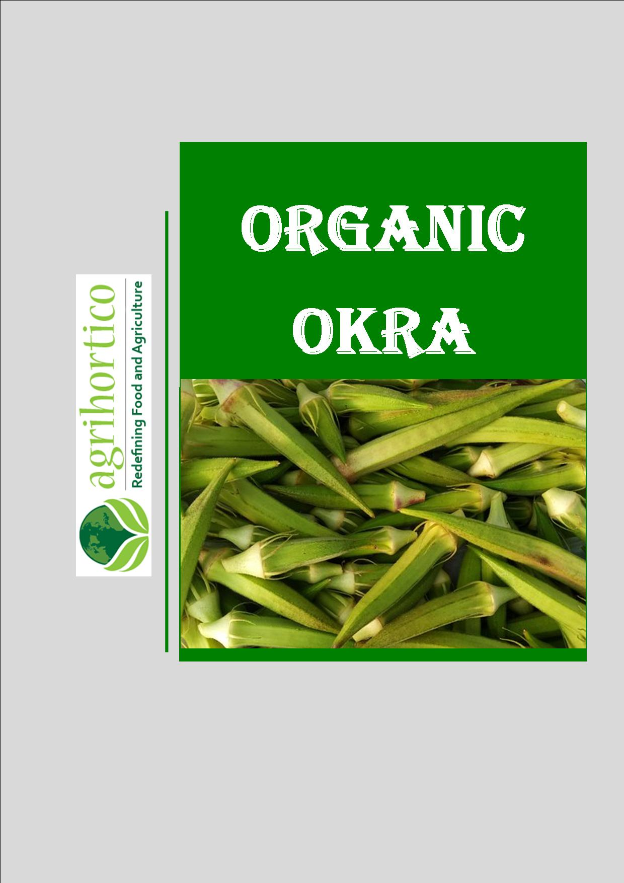 organic-okra