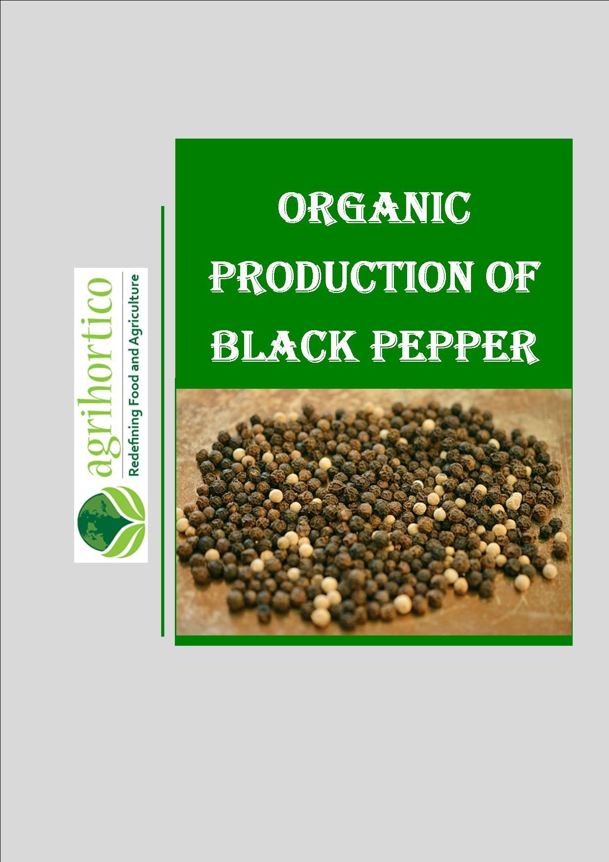 organic-blackpepper