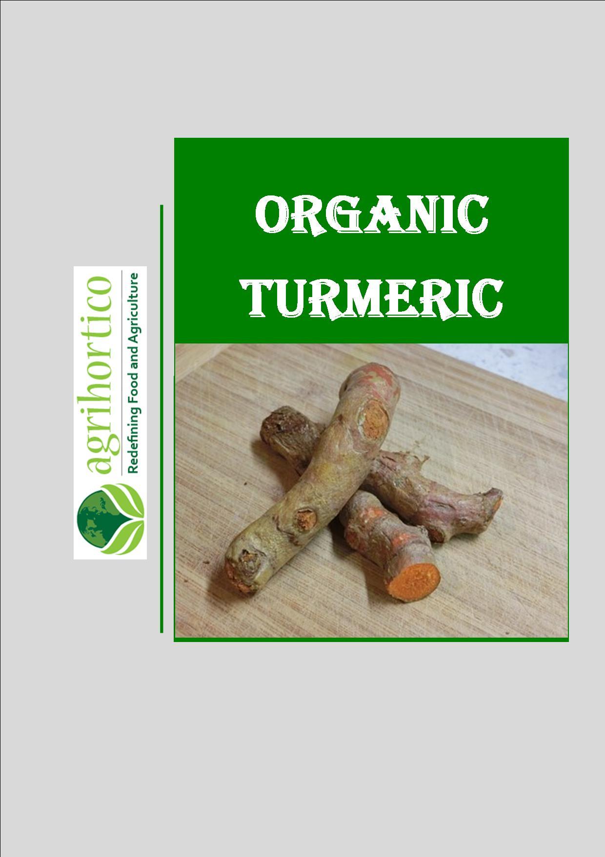 organic-turmeric