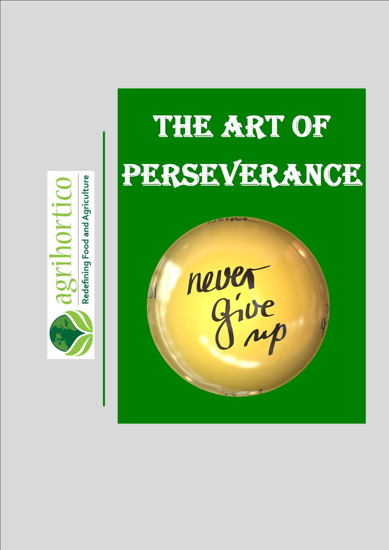 art-of-perseverance