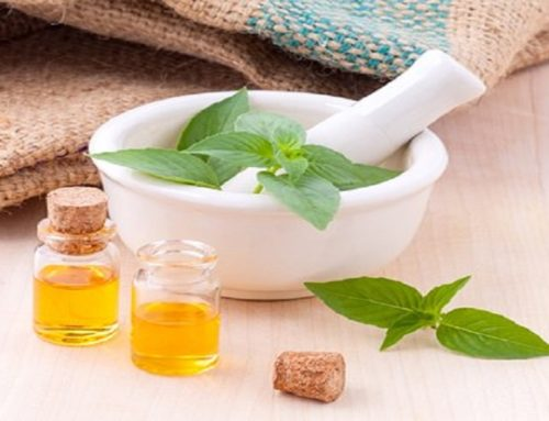 Therapeutic Uses of Aromatic Herbs